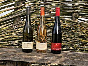 Frühlingsweine Weingut Schönhals
