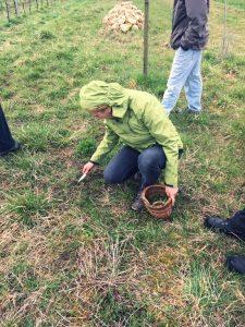 Marianne Knab hat immer ein Körbchen zum Kräuter sammeln dabei wenn sie die Zeile für die Natur besucht